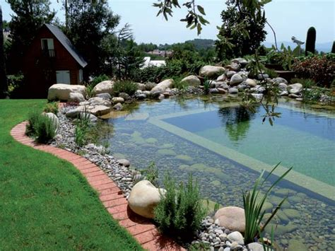 natural backyard pool 24 backyard natural pools you want to have them