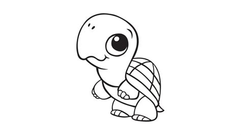 pictures of turtles cartoon az coloring pages
