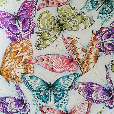 coloring pages for adults finished instagram butterflies pinterest instagram coloring