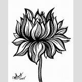 Lotus Flower Black And White Drawing | 712 x 900 jpeg 98kB