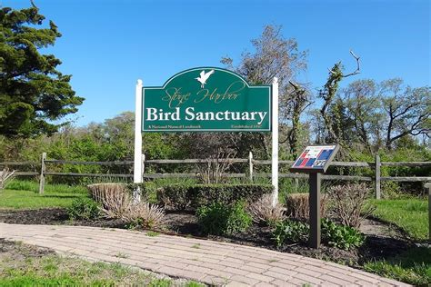 stone harbor bird sanctuary wikipedia
