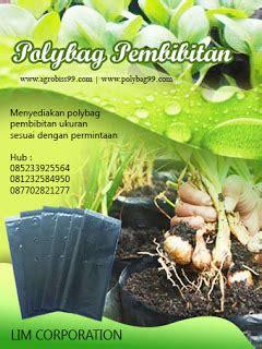 Jual Polybag Eceran Surabaya 08123 258 4950 jual polybag murah harga murah di