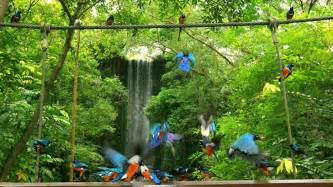 Park City Vacation Home Rentals - jurong bird park in singapore expedia