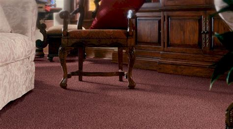 rug store burlington ma b d house of carpets burlington ma carpet flooring store visualize your new floor with