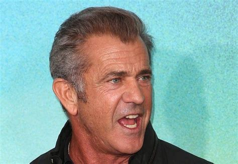 australian celebrity photographer mel gibson attacks australian photographer celebrities