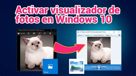 visualizador imagenes html recuperar visualizador de fotos cl 225 sico windows 10 taringa