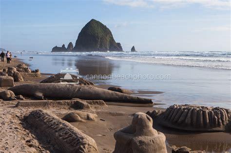 cannon beach sandcastle day contest oregon coast pictures