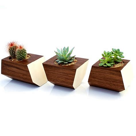 planter for succulents stylish natural walnut boxcar planter for succulents