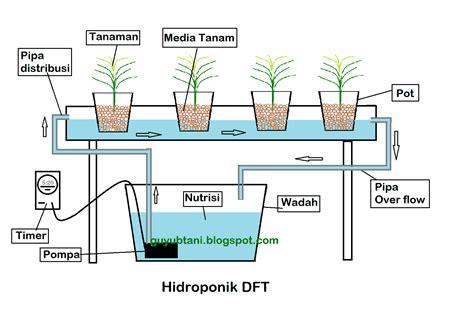 Fertigasi Dan Hidroponik cara menanam hidroponik dengan berbagai media dan sistem