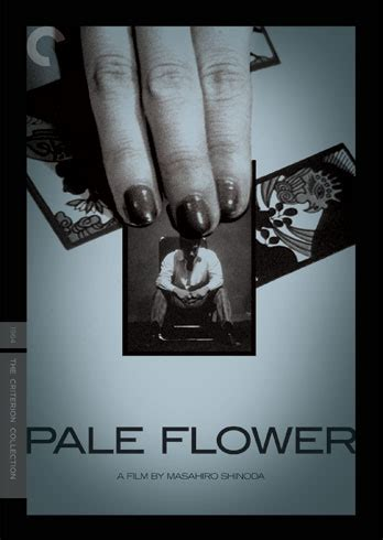 Pale Flower Criterion Collection pale flower 1964 the criterion collection