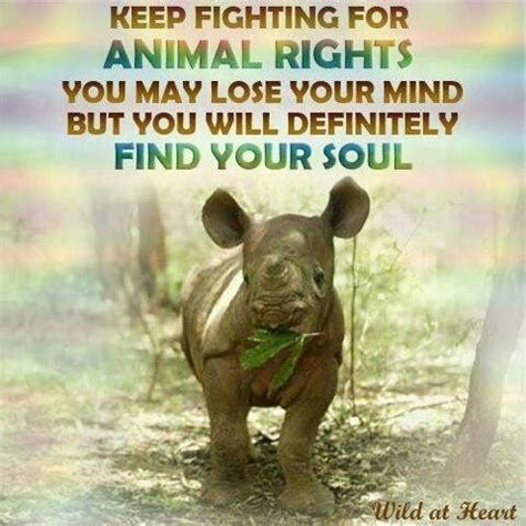 this mind find freedom discover happiness change your books keep fighting for animal rights you may lose your mind