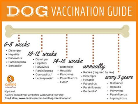 puppy vaccination schedule pdf vaccine checklist images