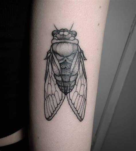 insect tattoos cigarra cicada de inseto insect