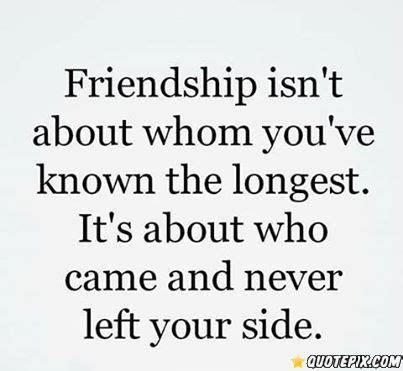 friendship meaning quotes true meaning of friendship friends for life pinterest