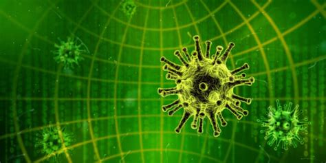 what 39 s the difference between malware a virus and a