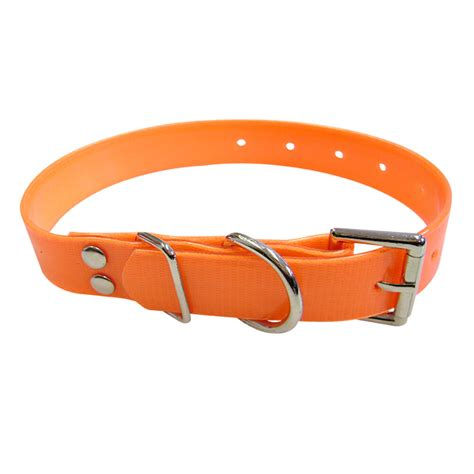 sport collar sport collar plastic coated collar orange 3 4 x 18