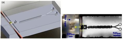 principles of sensing based on micro optical whispering gallery modes physics design and applications books researchers develop process to laser 3d print