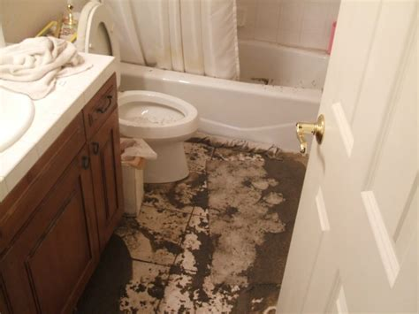 basement bathroom with septic tank extreme water damage what to do with a septic tank or