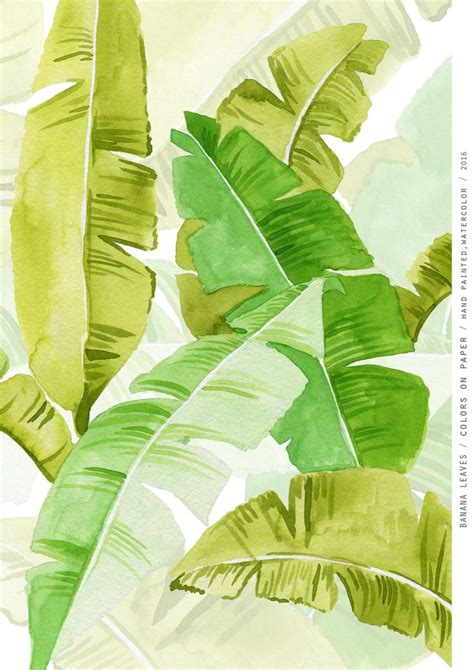 Paper Banana Leaf Machine - best 25 banana leaves ideas on banana leaves