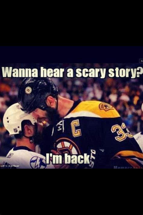Bruins Memes - 313 best big bad bruins boston bruins images on pinterest