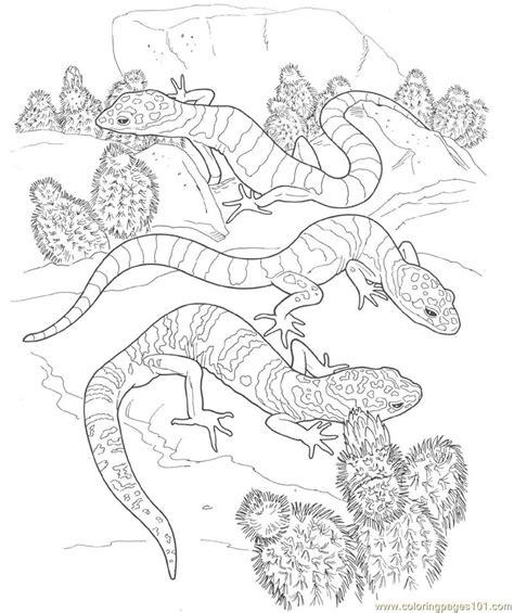 armadillo lizard coloring page free armadillo para colorear coloring pages