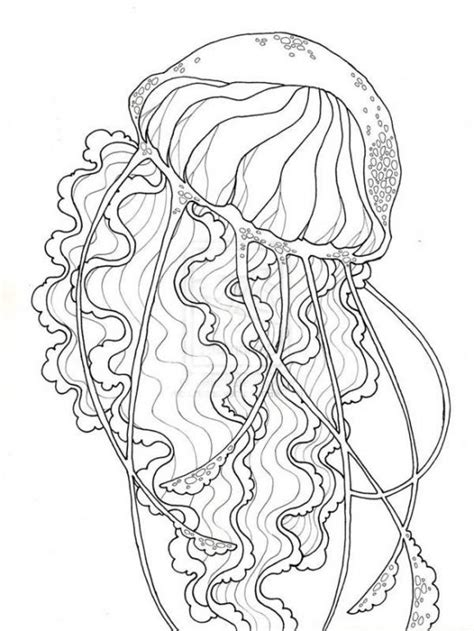realistic jellyfish free printable coloring page for