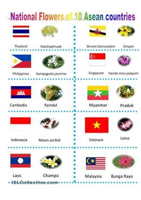 National Flowers Of Countries With Pictures country and flower on