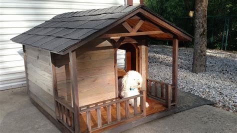 roof dog house shingle roof dog house bigdiyideas com