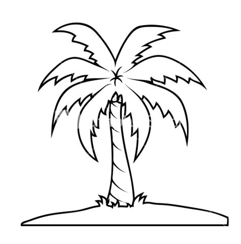 Palm Tree Leaves Outline by Palm Tree Outline Www Imgkid The Image Kid Has It