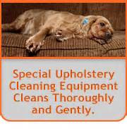 upholstery cleaning orange county carpet cleaning orange county the best carpet cleaning