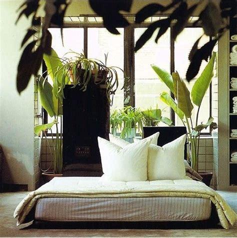 tropical decor inspiration feng shui interior design c 1982 plants indoorjungle houseplants plants