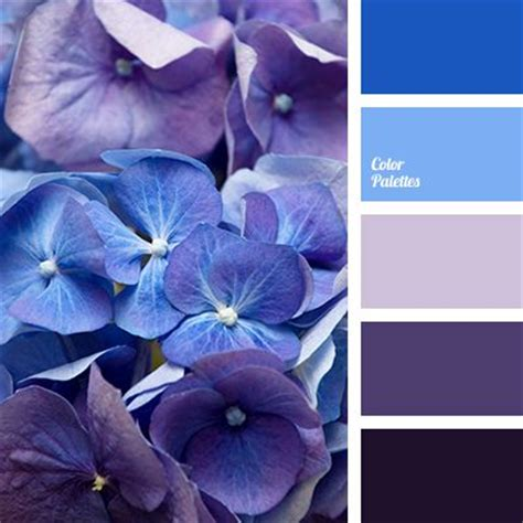 blue and purple color palette ideas 25 best ideas about purple color schemes on pinterest