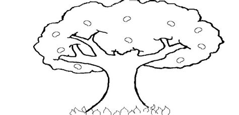 imagenes para dibujar un arbol fotos de arboles para dibujar awesome rbol muerto dibujo