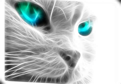 neon animal wallpapers gallery
