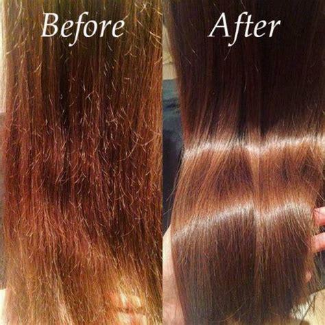Diy Hair Dryer Repair how to treat repair and prevent damaged hair