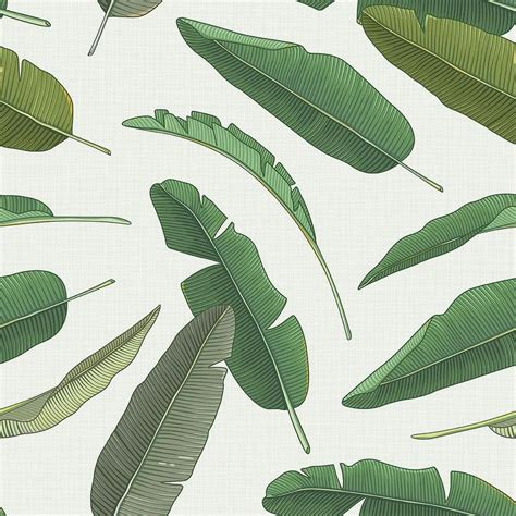 bananas leaf wallpaper green banana leaf removable wallpaper