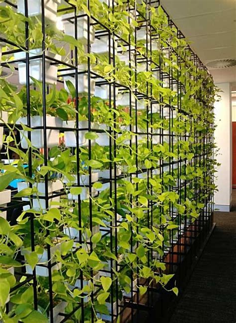 Garden Dividers Ideas 47 Best Images About Vertical Gardens On Waiting Area Divider Walls And Jazz