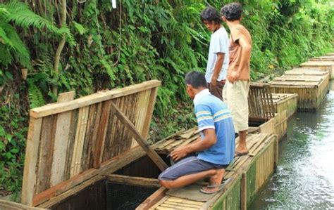 peluang usaha  kampung  menguntungkan
