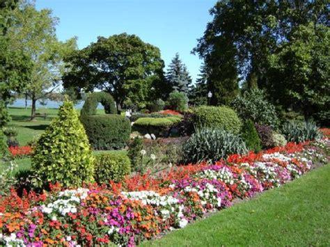 A And M Gardens by Cuidados De Las Plantas Y El Jardin Las Orqu 237 Deas Phalaenopsis Mariposa Paperblog