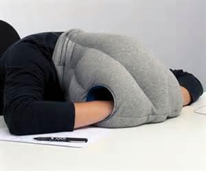ostrich pillow dudeiwantthat