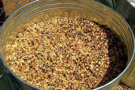 goat diy feed 2 alfalfa pellets 1 steam rolled oats 1