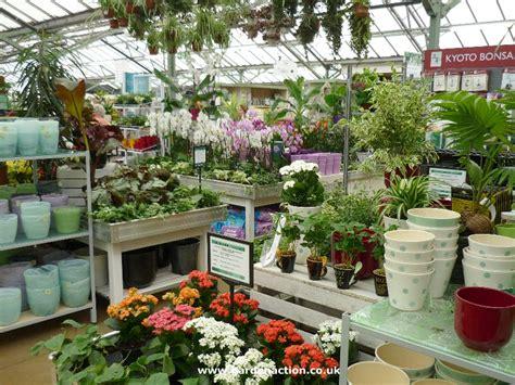cafe  frosts garden centre
