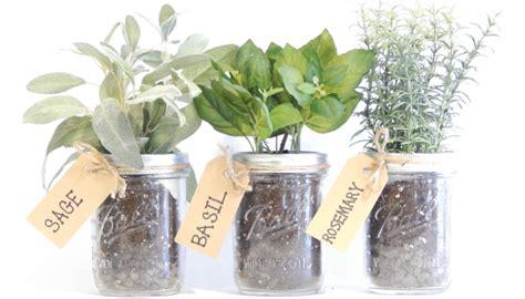 mason jar herb kits urban farmer seeds