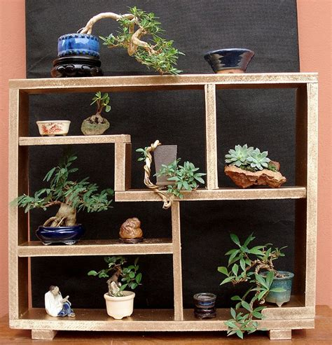 Diy Garden Shelf by Plant Display Shelf Diy