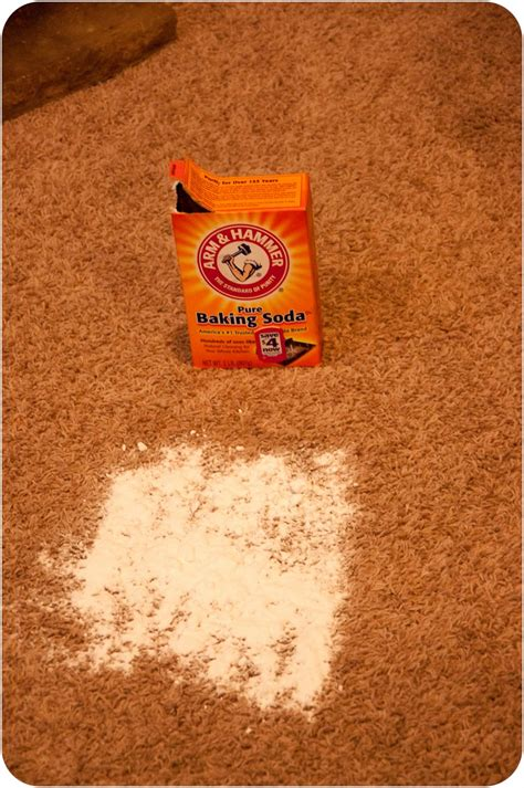 baking soda on rug stain remover carpet seriously amazed of riverton