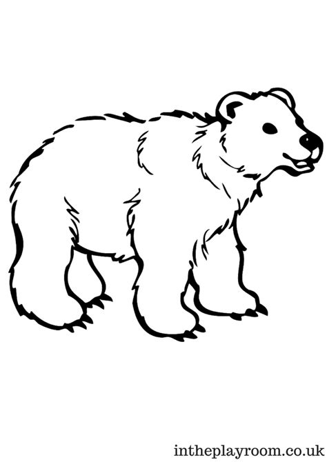 polar coloring pages arctic animals colouring pages in the playroom