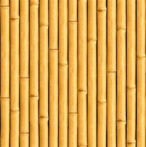 Wallpaper Wall Paper Dinding Motif Batang Bambu A jenis jenis bambu hias lengkap dengan wallpaper gambar bambu