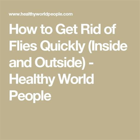 How To Get Rid Of Flies On Patio by 25 Best Ideas About Fly Remedies On