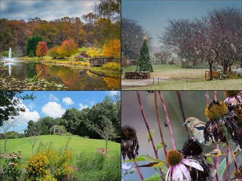Botanical Gardens In Virginia Meadowlark Botanical Gardens Dc Gardens