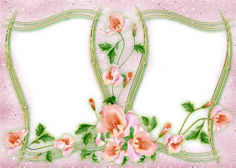 cornici con photoshop in png per la tua grafica fiori cornici e